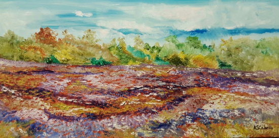 Flowers in the fields
