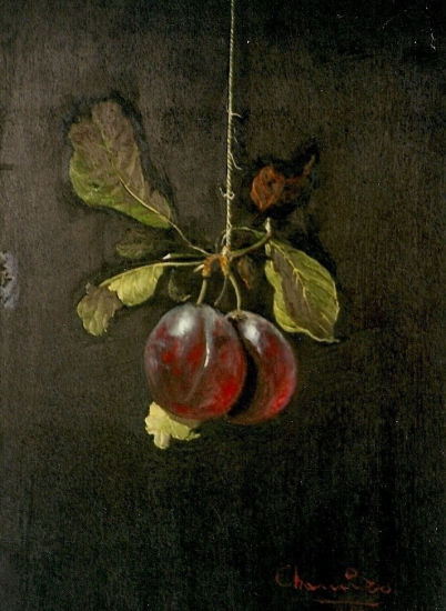 RED PLUM HUNG