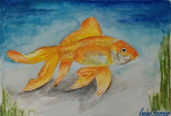 golden fish.jpg