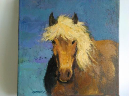 horse 1.4