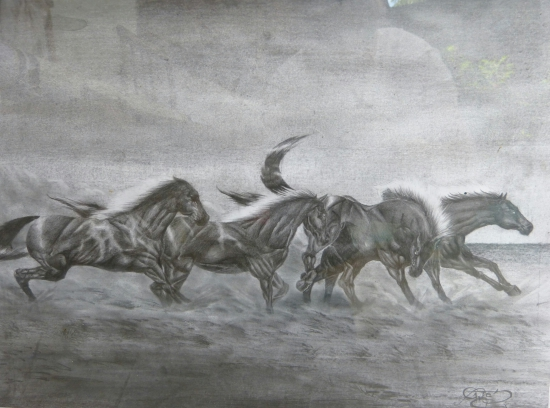 Dragones Argentinos Lápiz Dibujos Comprar Arte Original