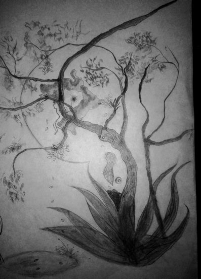 the bird, the tree, the amphibian and me in neptune