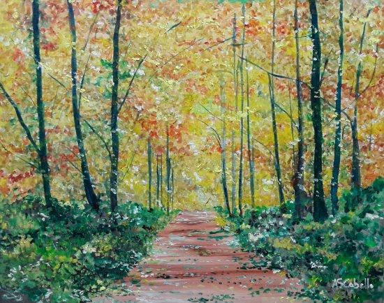 Un camino de un bosque frondoso