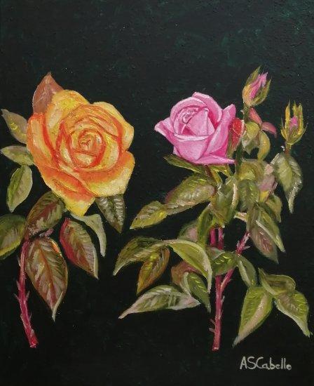 Roses looks